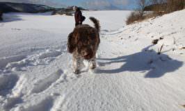 Kinder Handschuhe und Schneeanzüge im Aufwind